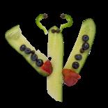 cucumber butterfly tspt